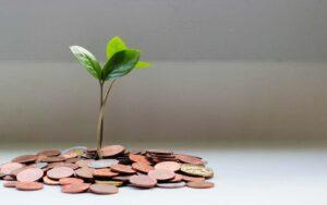 Penger og spire (bilde)